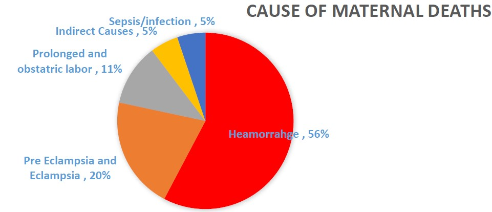 Cause of Maternal Deaths